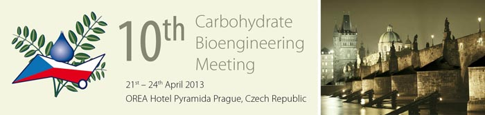 10th Carbohydrate Bioengineering Meeting 2013